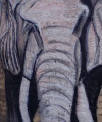 Luis Alberto Álvarez – Bimbo sull'elefante
