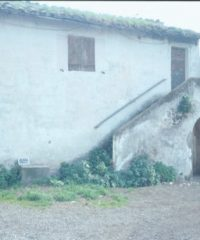 Casale Ambrogetti